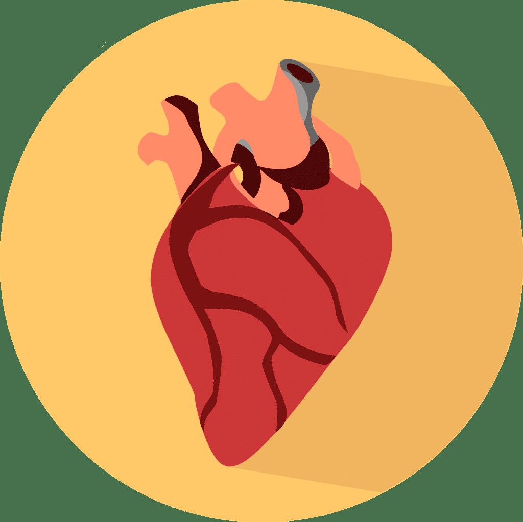 Herz aus dem 3D Drucker