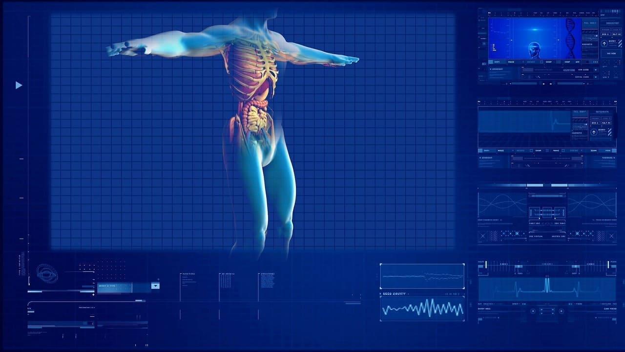 3D Drucker Organe aus dem Biodrucker